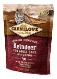 Reindeer for Adult Cats - Energy & Outdoor 512263