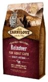 Reindeer for Adult Cats - Energy & Outdoor 512256